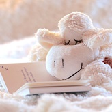 A toy sheep on an open book