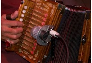 picture of a hand playing an accordion