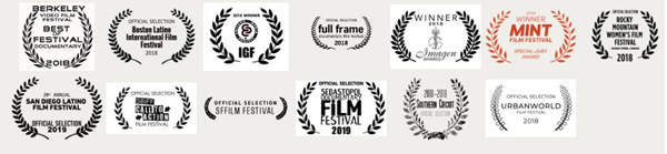 image of a collection of awards the film has won