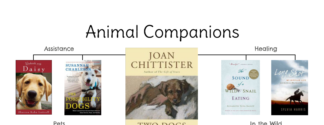 Animal Companions reading map
