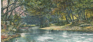 Romantic drawing of creek with trees.