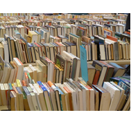 Books at Santa Rosa book fair