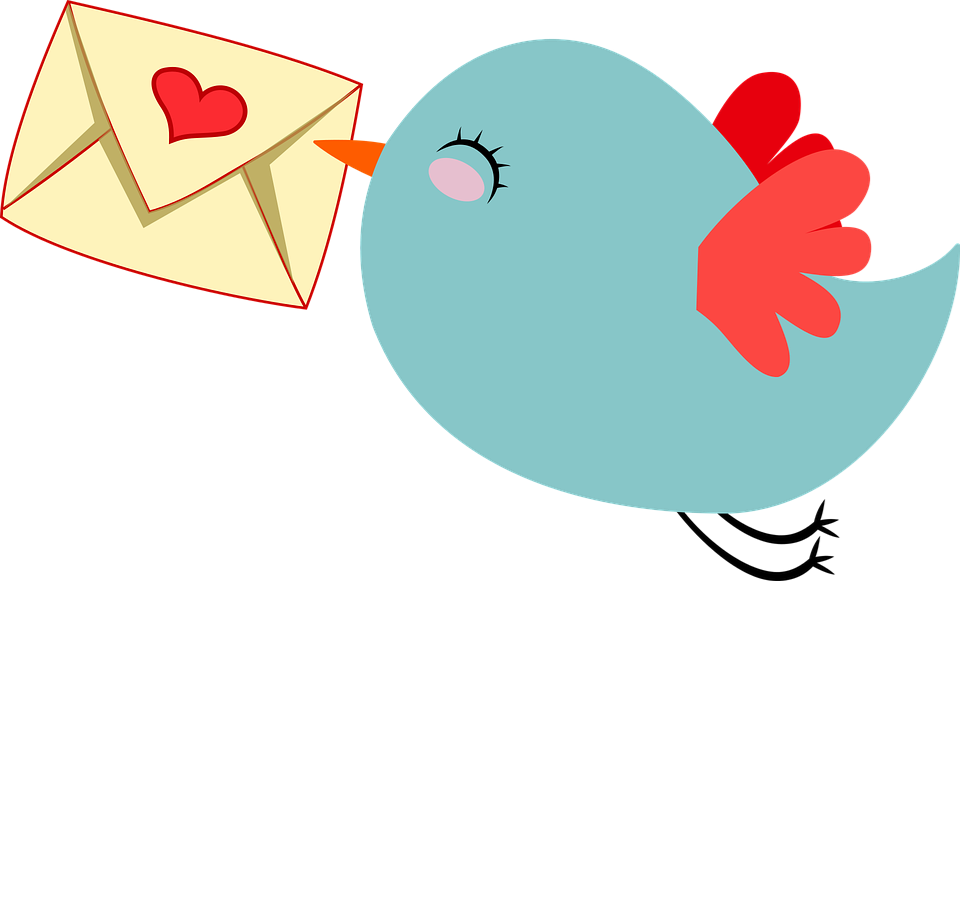 small blue bird carrying a love note